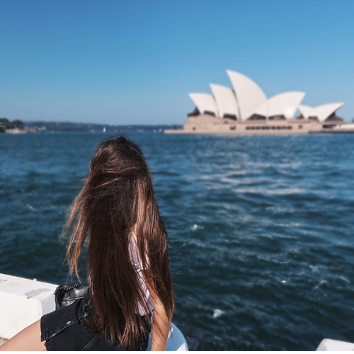 Blog-crew-to-follow-monica-Etihad-Sydney